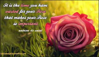 Rose day Quotes, Rose day images, rose day messages free