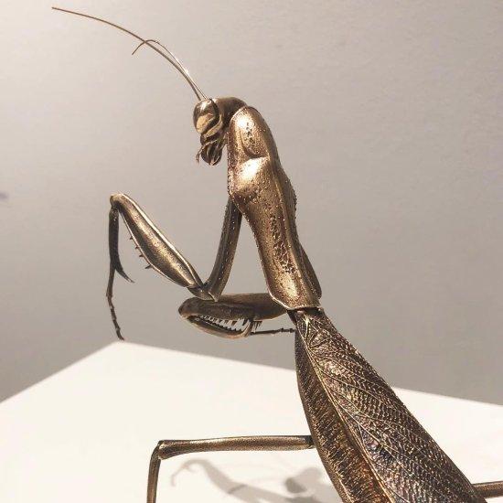 D. Allan Drummond arte ciência esculturas bronze modelos 3D trilobytes insetos