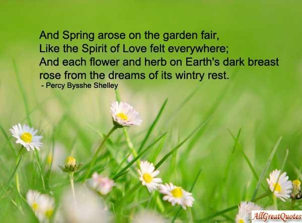 Amazing Wallpapers: Quotes about spring, quotes on spring