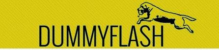 www.dummyflash.com