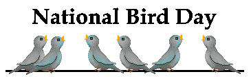 National Bird Day Wishes Pics