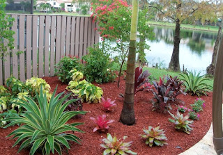 Landscaping by the water using red mulch between the plants.