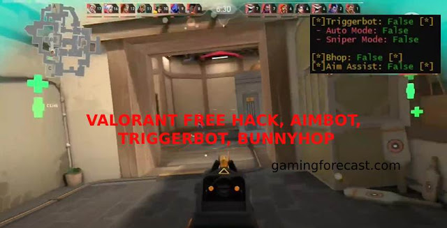Valorant Free Hack - Triggerbot, Aim Assist BunnyHop [Python] 2021 - New - Free Cheats for Games