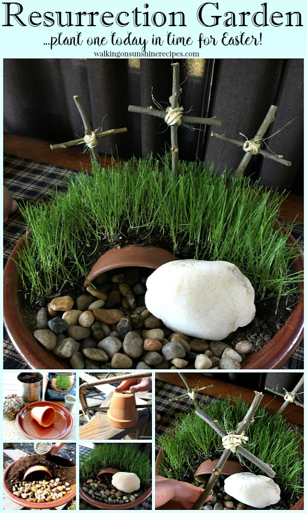 Learn how to make your own DIY Resurrection Garden from Walking on Sunshine.