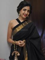 Poonam Kaur Saree New Pics 018.jpg