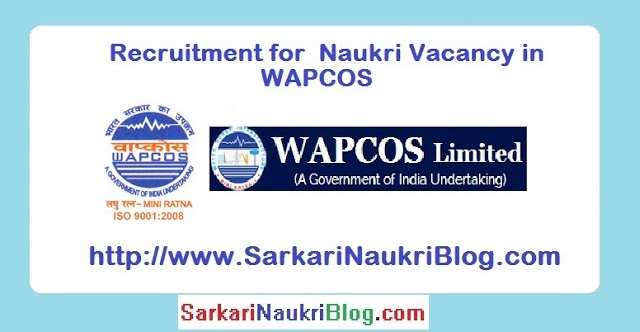 Naukri Vacancy Recruitment WAPCOS