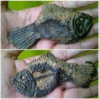 Fosil Ikan Bertuah Penglarisan