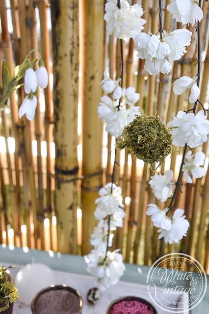 Zweige mit Mooskugeln und Schneeglöckchen dekorieren