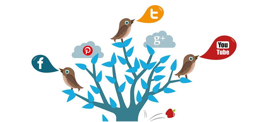 facebook y twitter para principiantes