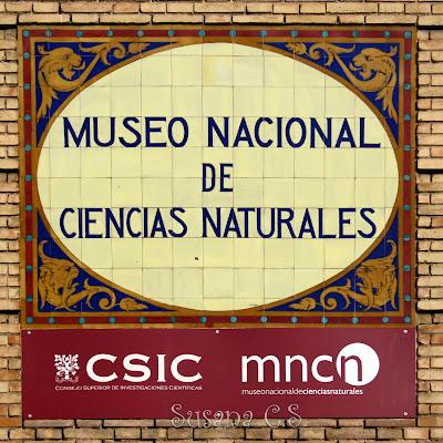 Resultado de imagen de MUSEO CIENCIAS NATURALES mADRID