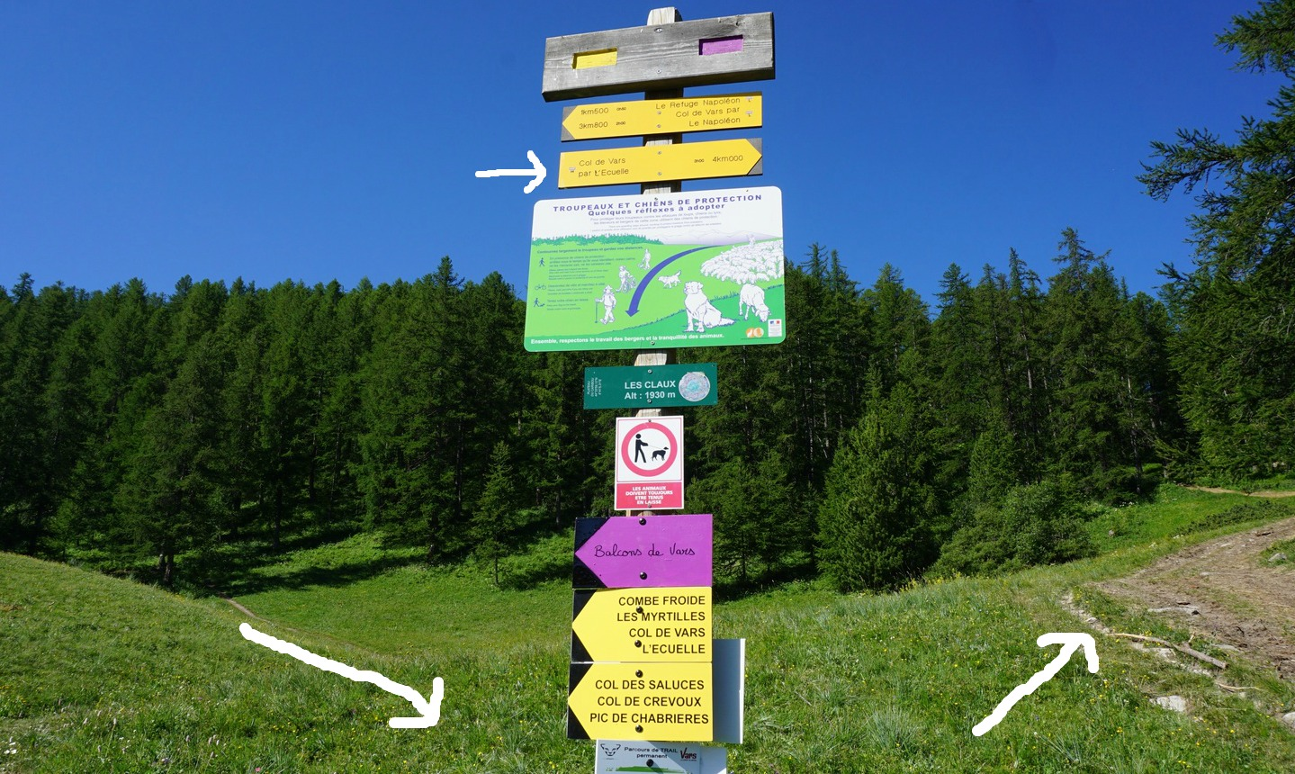 Signpost at start of loop in Vars