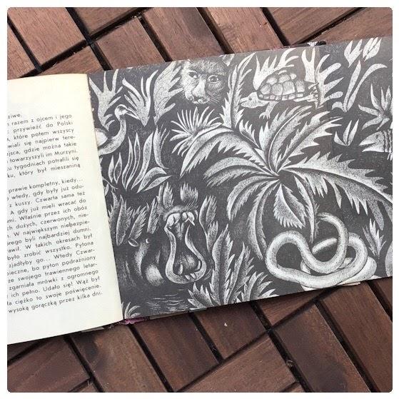 """""""Zmyślenia z myślenia"""" Jadwiga Jasny (tekst), Małgorzata Różańska (ilustracje), Nasza Księgarnia"""