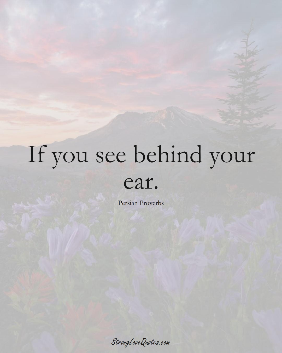 If you see behind your ear. (Persian Sayings);  #aVarietyofCulturesSayings