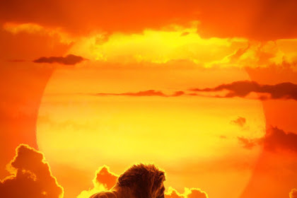 Download Film The Lion King (2019) Full Movie
