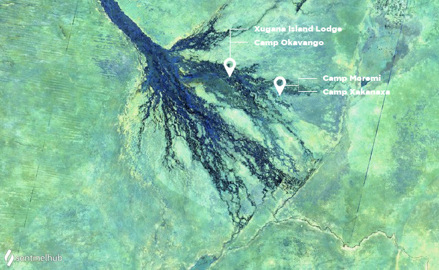 Okavango Delta in July 2020