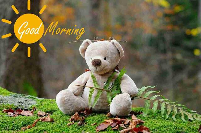 good morning image of cute teddy