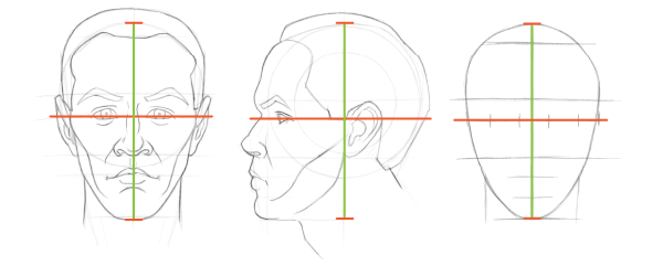 Head proportions chart: We use the length of the head to help position the eyes before we draw them.