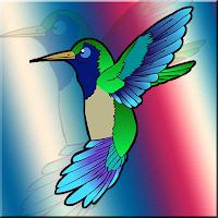The Hummingbird Escape