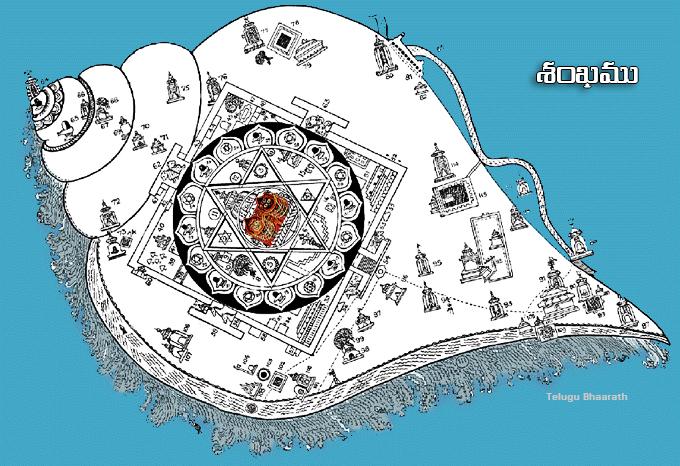శంఖము - shankam , shanka