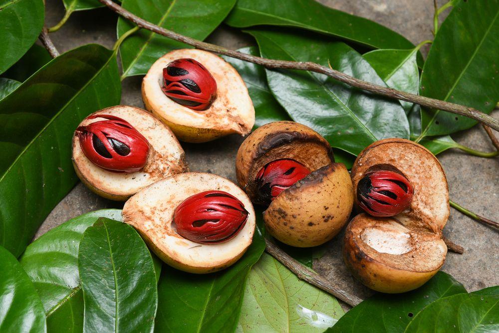 nutmeg with fruit
