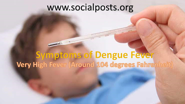 Dengue Symptoms In Child
