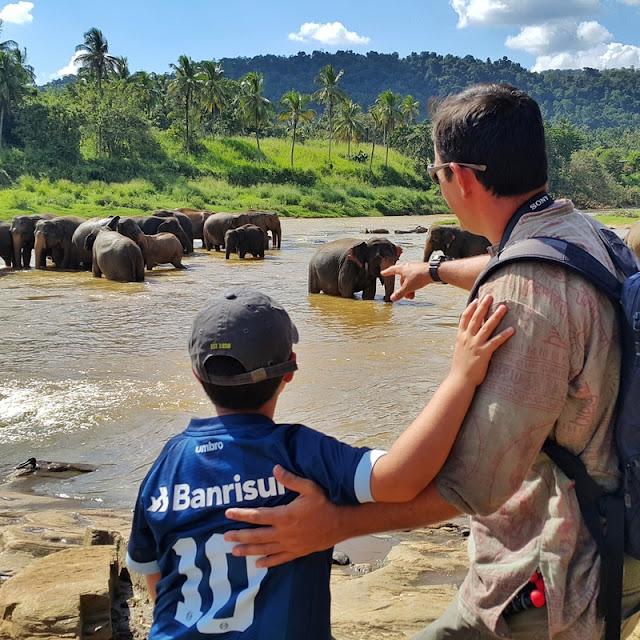 Orfanato de Elefantes de Pinnawela no Sri Lanka