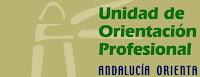 http://www.aprosoja.es/p/servicio-de-orientacion-profesional.html