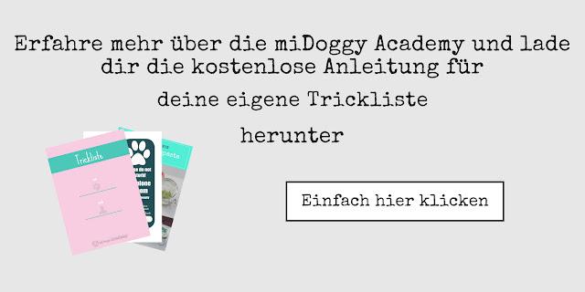https://community.midoggy.de/midoggy-academy-sammlung-anmeldung/