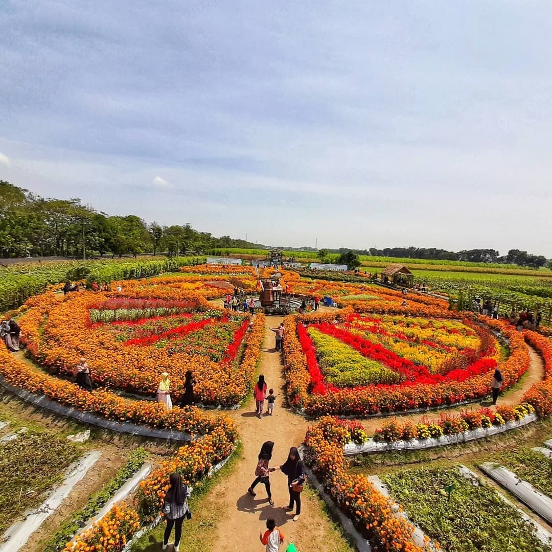 Destinasi Wisata Baru Taman Dewi Cemara