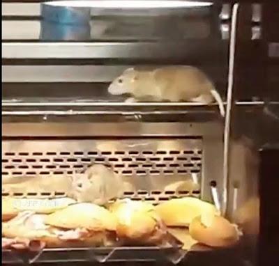 Σοκ από εισβολή αρουραίων σε διάσημη αλυσίδα φούρνων
