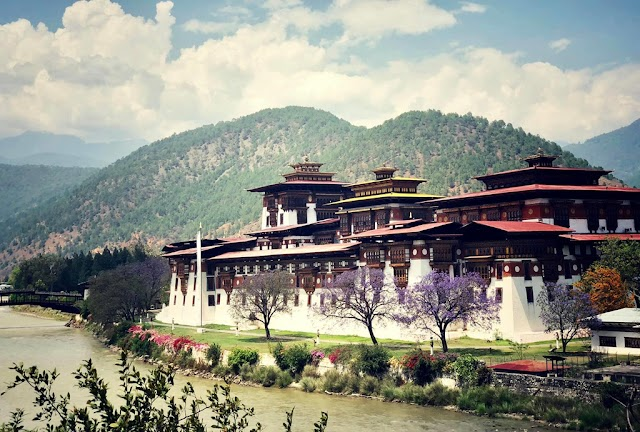 """Definition of simple """"happiness"""" in the cloud kingdom of Bhutan"""