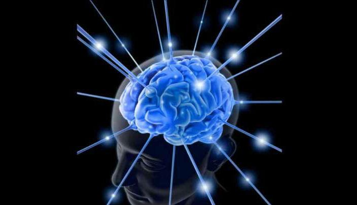 Hasil gambar untuk ilustrasi otak