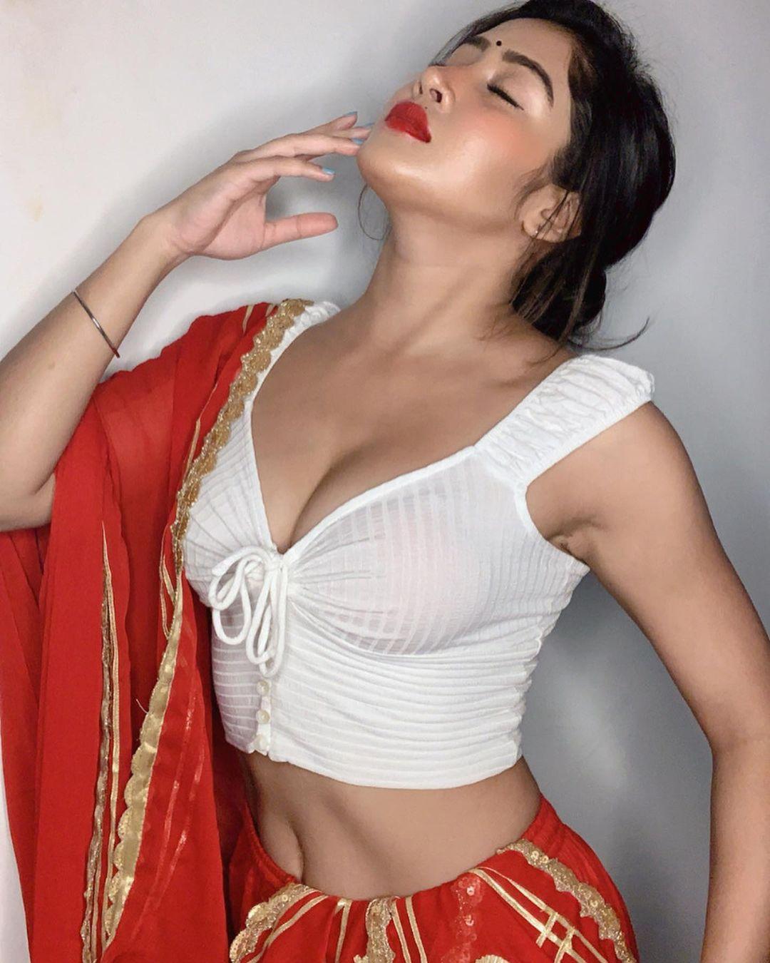 Sofia Ansari Beautiful in half saree