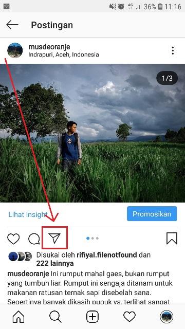 Cara Membagikan Postingan Instagram Ke Story