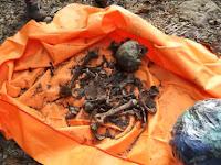 Perkembangan Penyelidikan Teka-Teki Penemuan Kerangka Manusia di Tondong Tallasa