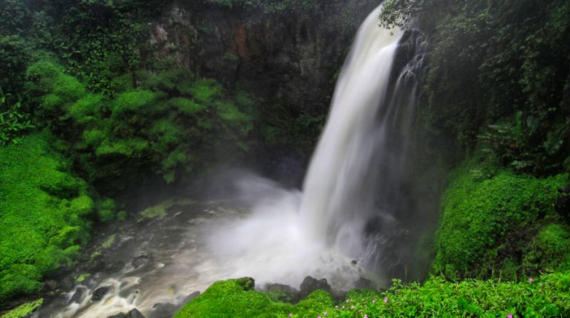 Telun Berasap Waterfall Package