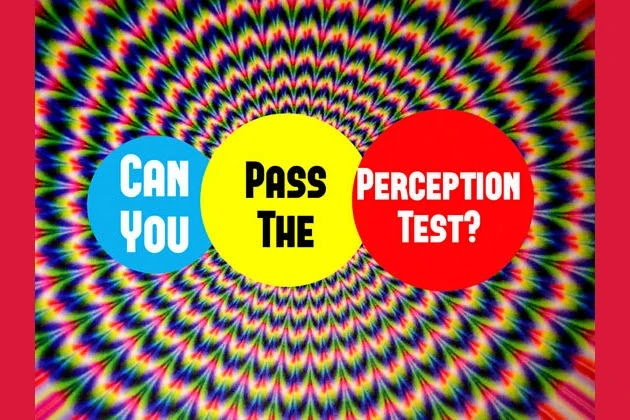 Can You Pass The Perception Test?