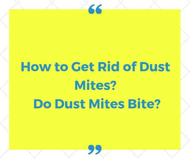 How to get rid of dust mites? Do dust mites bite?
