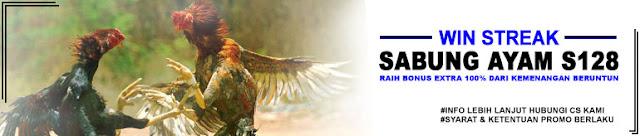 Promo Sabung Ayam Online
