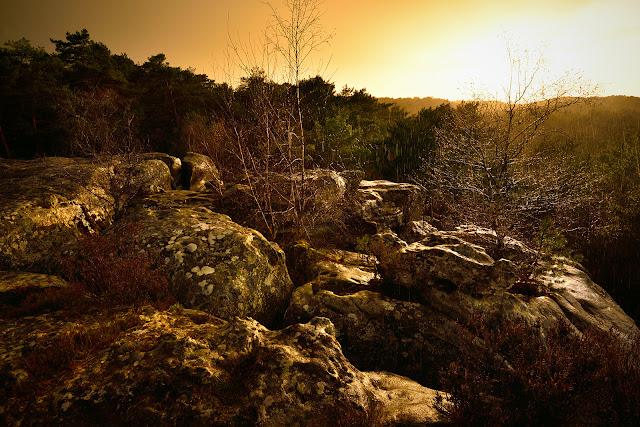 Gorges de Franchard, Fontainebleau