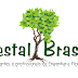 [SORTEIO] Aniversário Florestal Brasil