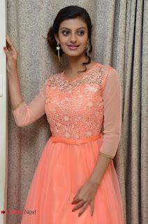 Actress Tanushka Tiwri Stills in Long Dress at Saranam Gachami Song Launch 0047