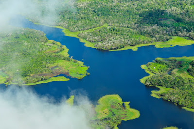 amazon-rainforest-intersting-facts
