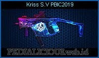 Kriss S.V PBIC2019