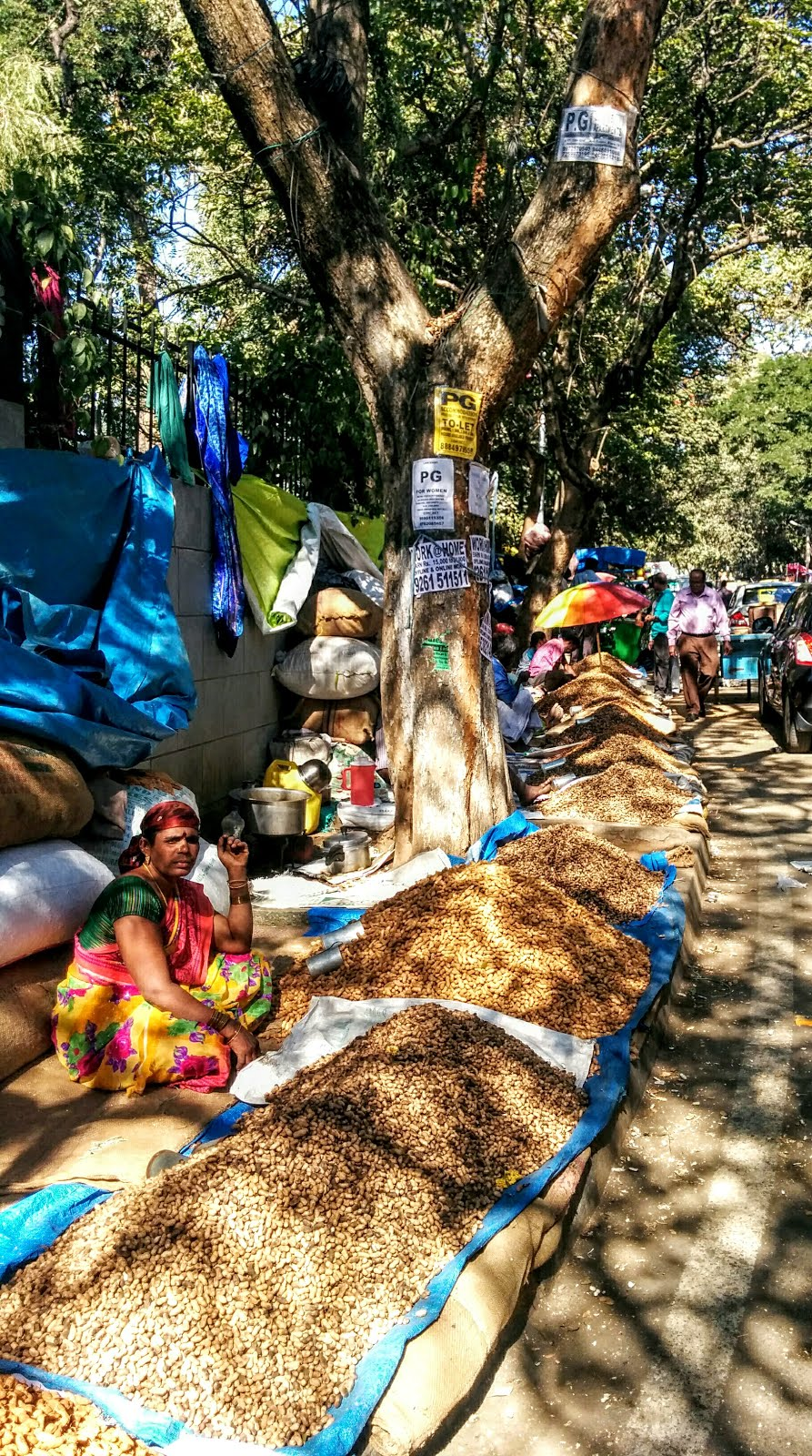 Lane of Groundnut shops on the side lanes of Bull Temple Road at Kadalekai Parishe