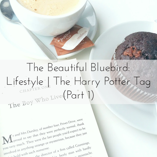 Lifestyle | The Harry Potter Tag (Part 1)