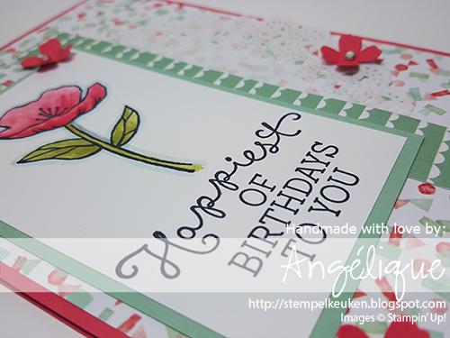 http://stempelkeuken.blogspot.com De Stempelkeuken Birthday Blooms, Birthday Bouquet DSP, Watermelon Wonder, Mint Macaron, Itty Bitty Accents, Archival Black, Tea Lace Paper Doilies, Rhinestone Basic Jewels, blenderpen