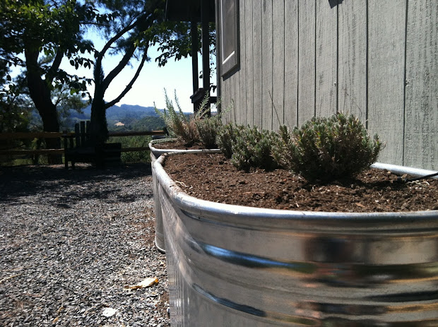 Raised Beds Galvanized Water Troughs