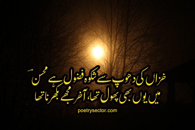 Mohsin Naqvi Urdu Poetry, Mohsin Naqvi 2 Lines Poetry, Sad Poetry ||| Poetry