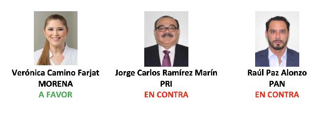 """Lamentan """"profundamente"""" empresarios yucatecos voto de Camino Farjat a favor de la reforme eléctrica"""